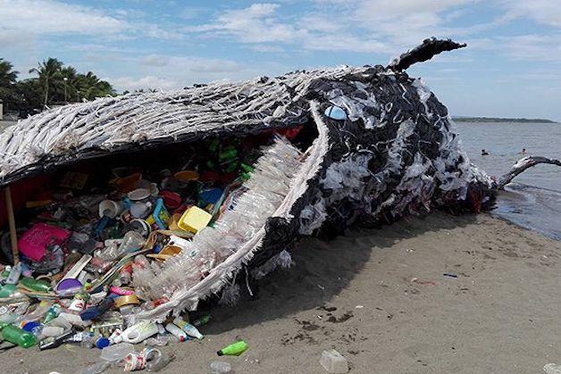 ballena plastico