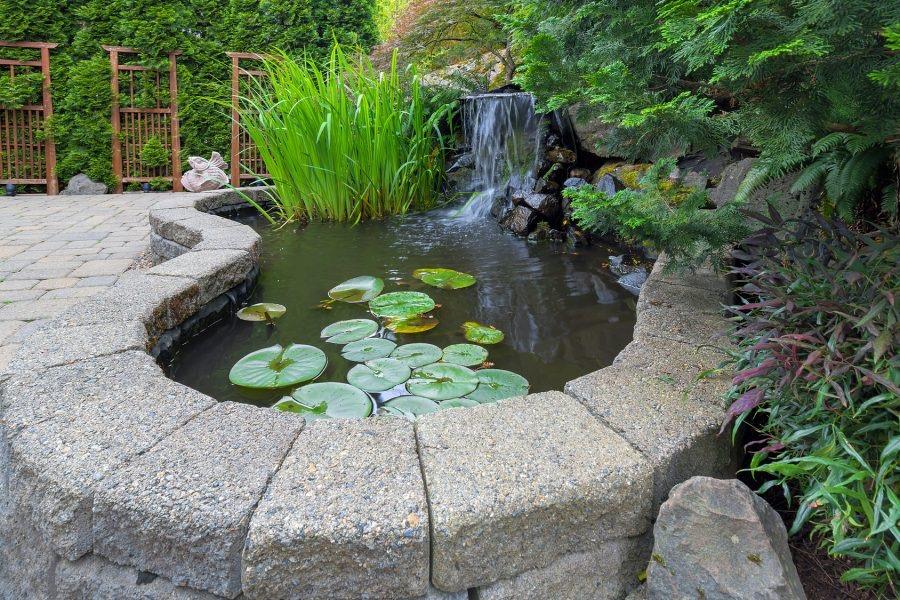 dehumidificador estanque jardin