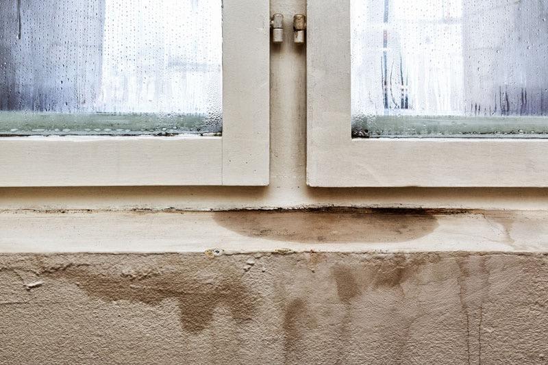 moho ventana humedad edificio