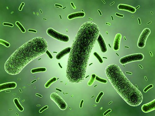 Partículas nocivas purificadores de aire