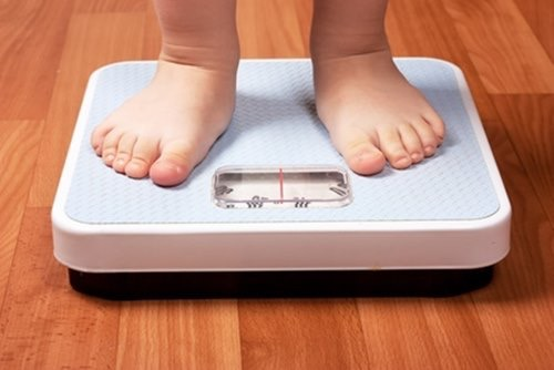 tensiometro peso