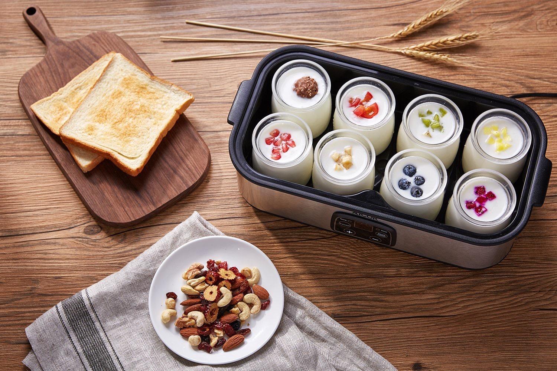 yogurtera Aicok2