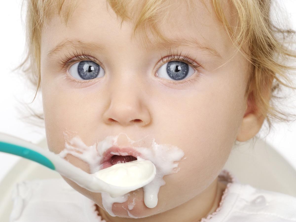 yogurtera toda familia