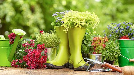 cómo hacer abono orgánico en casa