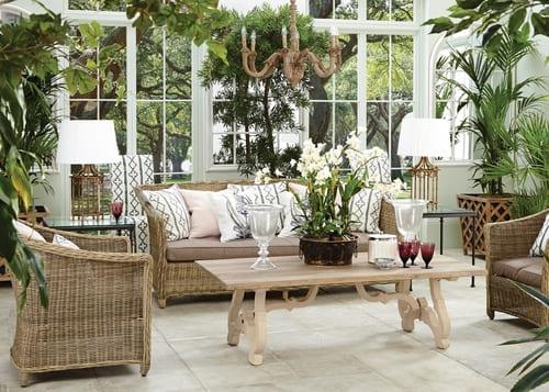 Las plantas en casa pueden dar humedad