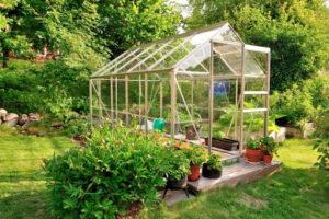 invernadero jardín
